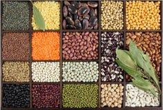 Beans, peas, lentils. Stock Images