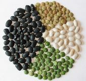 Beans Pie Chart. Pie chart made of various dried beans royalty free stock images