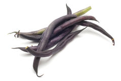 Beans pods Stock Photography