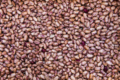 Beans raw background. Vegetarian and vegan diet. Royalty Free Stock Photos