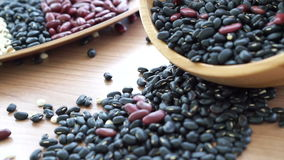 Beans red black and job's tear multi-grain protein food stock footage