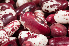 Beans red macro Royalty Free Stock Photography