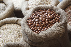 Beans, rice, lentils, oats, wheat, and barley in jute sack Stock Images