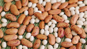 Beans at rotating stand closeup stock footage