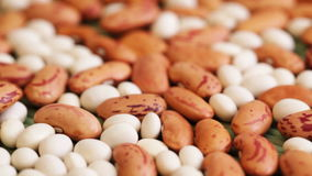 Beans at rotating stand closeup stock video footage