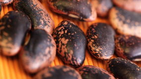 Beans at rotating stand stock video footage