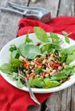 Beans and ruccola salad Stock Images