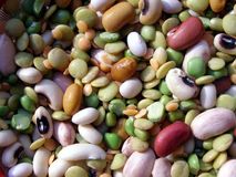 Beans salad stock photography