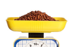 Beans on scale. One kilo of brown beans on a yellow kitchen scale isolated on white Royalty Free Stock Photo