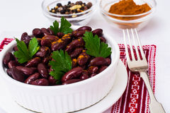 Beans, spices and curry in white salad bowl Royalty Free Stock Image