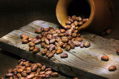 Beans still life. Still life of borlotti beans with light painting Royalty Free Stock Photo