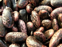 Beans texture Royalty Free Stock Photos