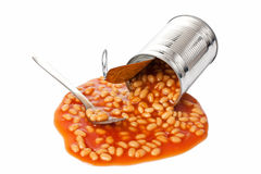 Beans in tin can Stock Images