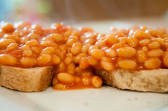 Beans on toast Royalty Free Stock Photography