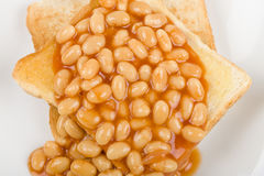 Beans on Toast Royalty Free Stock Images