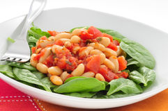 Beans and Tomatoes Royalty Free Stock Images