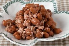 Beans Tuna Fish Salad Stock Photography