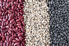 Beans Varieties Stock Photography