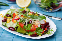 Beans and vegetables salad Royalty Free Stock Image