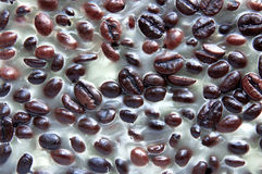 Beans in wax. Coffee beans in light wax background Stock Photos