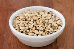 Beans in white bowl Stock Images