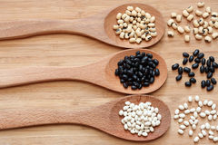 Beans in a wooden spoons Royalty Free Stock Image