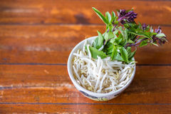 Beansprout and basil in cup Royalty Free Stock Photo