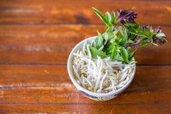 Beansprout e basilico in tazza Fotografia Stock Libera da Diritti