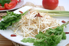 Beansprouts Stock Images