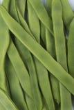 Beanss verdes Imagens de Stock