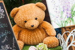 Bear. Big Bear on the green table Royalty Free Stock Images