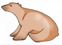 Bear. Danger nature forest power Stock Image