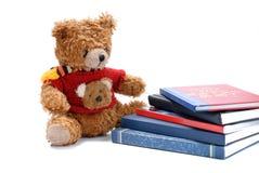 Bear. Teddy bear toy on white background Stock Photos