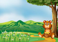 A bear above the hills Royalty Free Stock Image