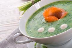 Bear allium soup with smoking salmon Stock Image