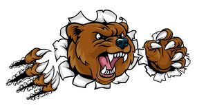 Bear Angry Mascot Background Claws Breakthrough. A Bear angry animal sports mascot breaking through the background with its claws Stock Images