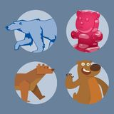Bear animal vector mammal teddy grizzly funny happy cartoon predator cute character illustration. Stock Images