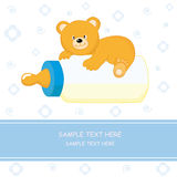 Bear Baby Bottle Stock Images