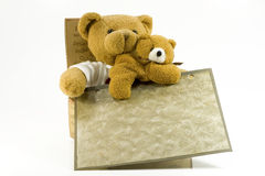 Bear, baby and frame Royalty Free Stock Photos