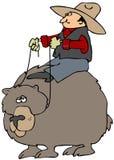 Bear Back Rider stock image