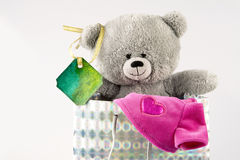 Bear in bag Stock Image