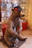 Bear with balalaika Stock Images