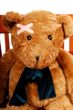 Bear with Bandage Royalty Free Stock Photos