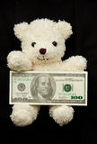 Bear with banknote Stock Photos