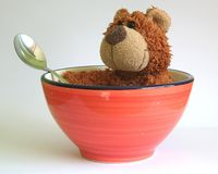 Bear in a basin Stock Photos