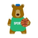 Bear basketball Stock Image