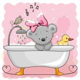 Bear in the bathroom Stock Photos