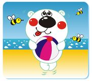 Bear on the beach. Vector illustration of white bear with the ball on the beach Royalty Free Stock Photo