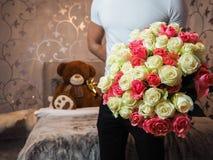 Bear, Beautiful, Bloom royalty free stock photos