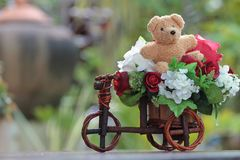 Bear with beautiful flowers. Royalty Free Stock Photos